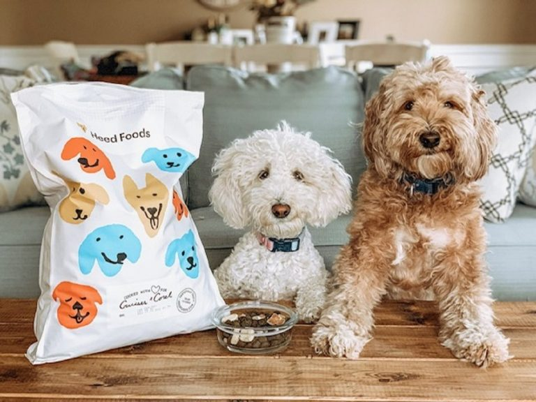 dog-food-for-sensitive-stomachs