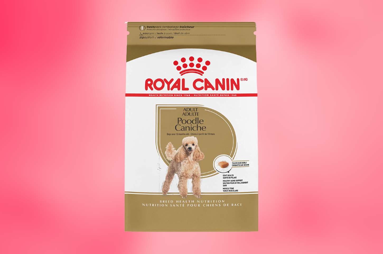 best-dog-food-for-poodles