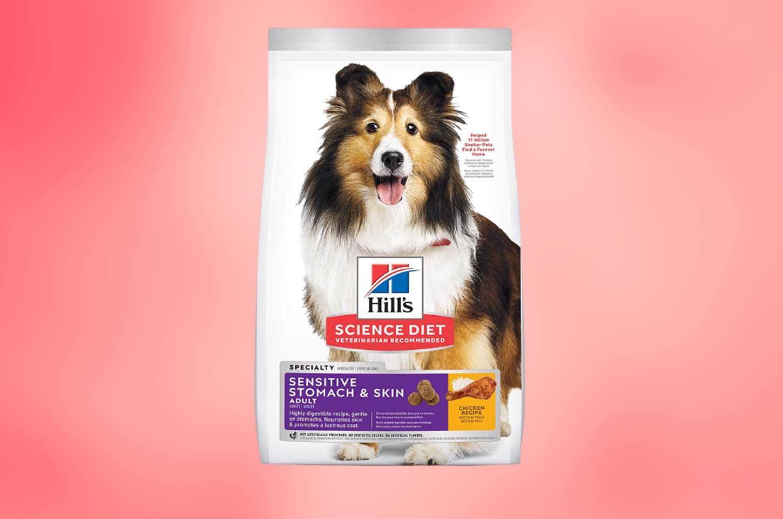 best-dog-food-for-skin-allergies
